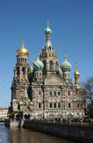 petersburg russia sainttempel Royaltyfria Bilder