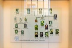 Petersburg Ryssland - Juli 2, 2017: Stamträd av Romanovsen I royaltyfria foton