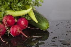 Peterselie, geschikte radijzenpeper en komkommers Royalty-vrije Stock Fotografie
