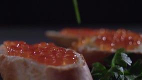 Petersilie fällt auf einen roten Kaviar auf einem Sandwich stock footage