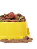 Petfood bowl Royalty Free Stock Image