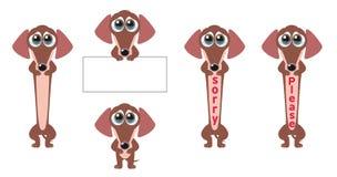Petición del perro Fotografía de archivo