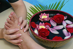 Peticure. Foot massage with flower bath at a Thai spa Royalty Free Stock Images