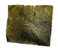 Petisco da erva daninha do mar Fotos de Stock Royalty Free