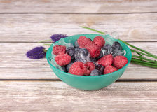 Petisco das frutas frescas Imagem de Stock Royalty Free
