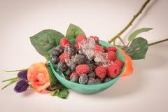 Petisco das frutas frescas Foto de Stock Royalty Free