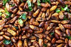 Petisco fritado da larva de inseto Fotos de Stock