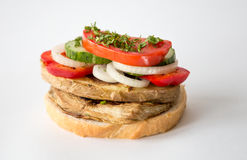 Petisco-sanduíche Foto de Stock Royalty Free