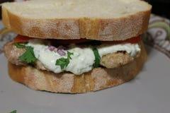 Petisco saudável, almoço Grego tradicional sanduíche envolvido com tzatziki da carne de porco fotos de stock