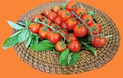 Petisco saudável de tomates de cereja em uma haste com manjericão na placa de vime para vegetarianos Fotografia de Stock