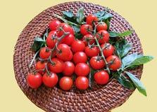 Petisco saudável de tomates de cereja em uma haste com manjericão na placa de vime para vegetarianos Foto de Stock Royalty Free