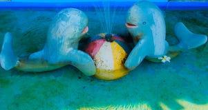 Petit étang bleu mignon de fontaine de dauphin pour l'ornamental dans le Gard Photographie stock libre de droits
