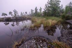 Petit étang couvert par le brouillard Image stock