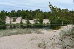 Petit étang entouré par les arbres et le sable blanc photos stock