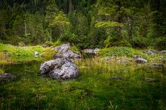 Petit étang Gosaulacke sous Dachstein en Autriche avec la grande réflexion de la forêt verte images stock