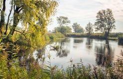 Petit étang naturel tôt le matin Photographie stock