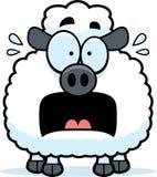 Petit agneau effrayé illustration libre de droits