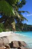 Petit Anse. Beautiful beach of Petit Anse, Mahé, Seychelles Royalty Free Stock Image