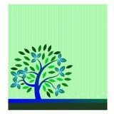 Petit arbre élégant Photographie stock libre de droits