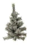 petit arbre de neige de sapin dessous Images stock