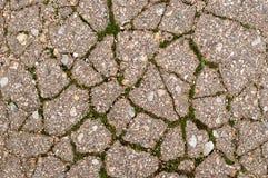 Petit asphalte gris avec de la mousse verte pour des textures Photos libres de droits