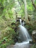 Petit automne de l'eau de ruisseau Photo stock