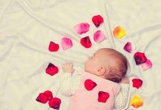 Petit bébé avec des pétales de rose Photo libre de droits