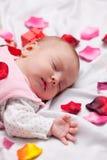 Petit bébé avec des pétales de rose Photos stock