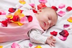 Petit bébé avec des pétales de rose Images stock