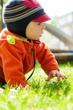 Petit bébé garçon marchant et explorant le parc Photographie stock libre de droits