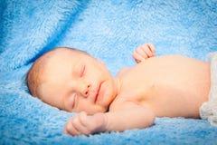 Petit bébé garçon nouveau-né 14 jours, sommeils Photographie stock libre de droits