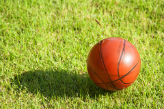 Petit basket-ball sale sur l'herbe Photographie stock libre de droits