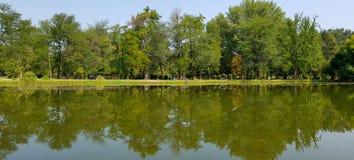 Petit beau lac de panorama avec la réflexion de grands arbres verts voisins photographie stock libre de droits