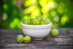 Petit bol de groseilles à maquereau mûres sur une table en bois dans le jardin d'été images stock