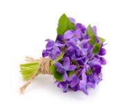 Petit bouquet avec des violettes de pré. Photographie stock libre de droits