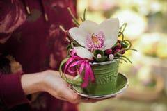 Petit bouquet avec la grande orchidée blanche Images stock