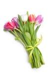 Petit bouquet des fleurs de tulipes de ressort Photos libres de droits