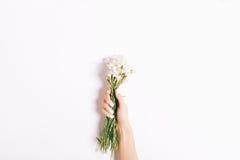 Petit bouquet des oeillets roses dans une main femelle avec un manicur Image libre de droits