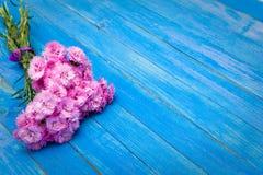 Petit bouquet des oeillets rouges sur les conseils minables bleus images stock