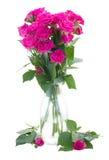 Petit bouquet des roses roses de floraison dans le vase Photos libres de droits