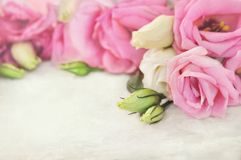 Petit bouquet sensible d'eustoma, carte florale de fond de bouquet de fleurs, en pastel et molle de fête de floraison rose photographie stock