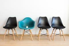 Petit cactus sur une chaise dans une salle vide, un concept photo stock