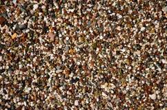 Petit caillou sur la plage Photographie stock libre de droits