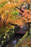 Petit canal avec l'érable rouge Photographie stock libre de droits
