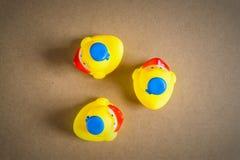 Petit canard en caoutchouc du caneton trois Images libres de droits