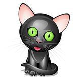 Petit chat noir Photographie stock