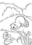 Petit chat se reposant à la banque de l'étang et regardant la grenouille Image libre de droits