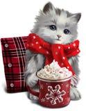 Petit chaton buvant d'un milkshake Photo stock