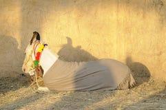 Petit cheval Photo libre de droits
