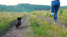 Petit chien à côté d'une fille courant heureusement par l'herbe en parc naturel, mouvement lent banque de vidéos